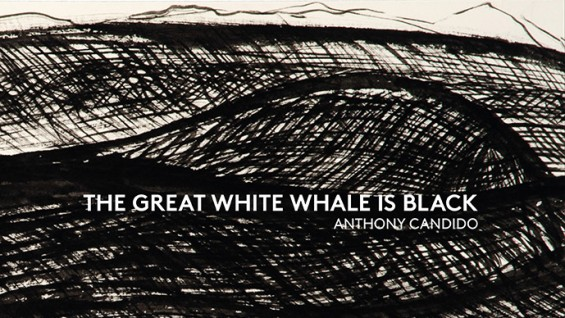 Tony Candido: The Great White Whale is Black