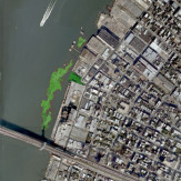 Grand Ferry Park | Floating Wetlands In Tidal Shallows